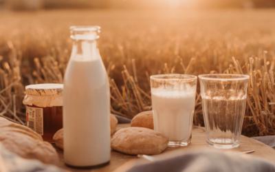 Qu'est-ce que le lactose ?